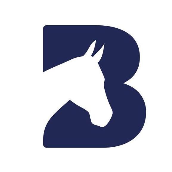 Fantastic Farm Emoji Hunt at Bransby Horses