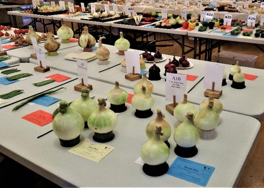 Kirton gardeners exhibition