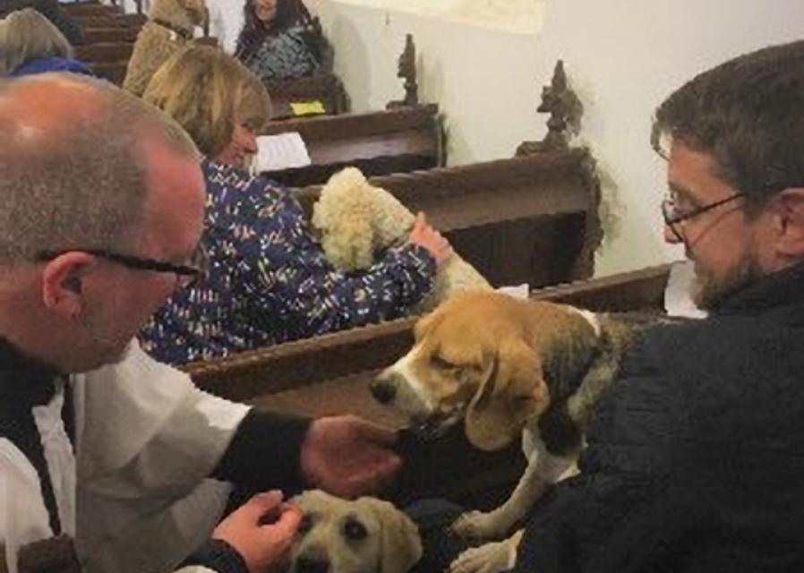 Hayton Pet Service